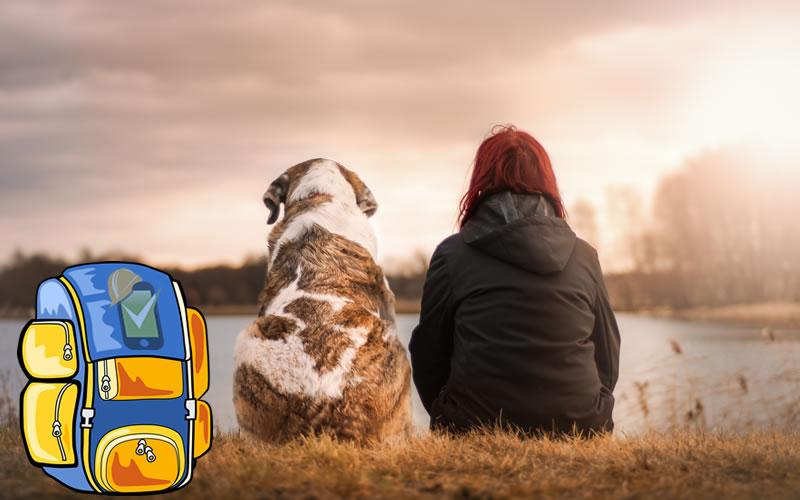 Un kit de emergencias para mascotas es la forma de demostrarle tu amor a tu animal de compañía