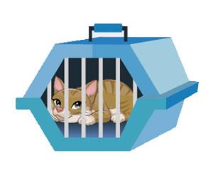 El kit de emergencias para mascotas debe incluir un medios de transporte para la mascota
