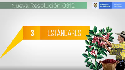 Resolución 0312/19 son 3 estándares