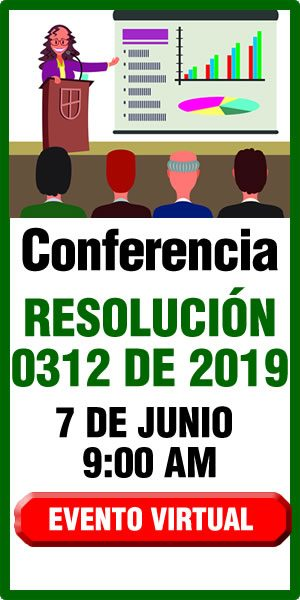 Conferencia virtual Resolución 0312 de 2019