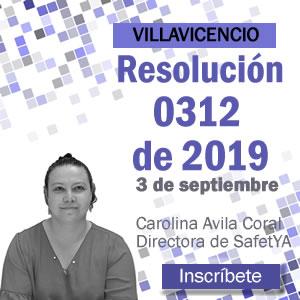 Conferencia Resolución 0312 de 2019