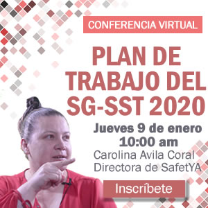 Plan de trabajo SG-SST 2020