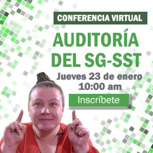 Confererencia virtual auditoría del SG-SST