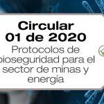 La Circular Conjunta 001 de 2020 fue expedida por Minsalud, Mintrabajo y Minminas