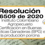 Los requisitos de la Certificación en Buenas Prácticas Ganaderas (BPG) en la producción porcina están en la Resolución 76509 de 2020